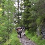 Zwischen Jenisberg und Monstein...